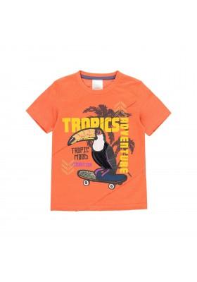 """Camiseta punto """"pajaro"""" de niño Boboli modelo 522054"""